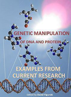 GENETIC MANIPULATION OF DNA  2013 - ژنتیک