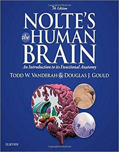 Noltes The Human Brain  2016 - نورولوژی