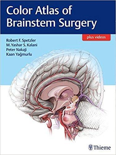 Color Atlas of Brainstem Surgery 2017 - نورولوژی